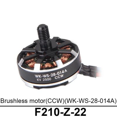 Spare 2500KV CCW Brushless Motor Fitting for Walkera F210 RC Model