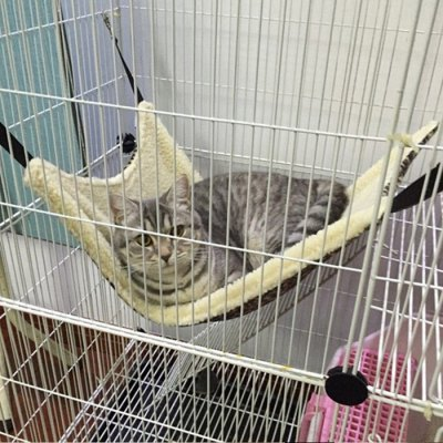 multi-functional-pet-cage-hammock-flannel-material-cat-bed
