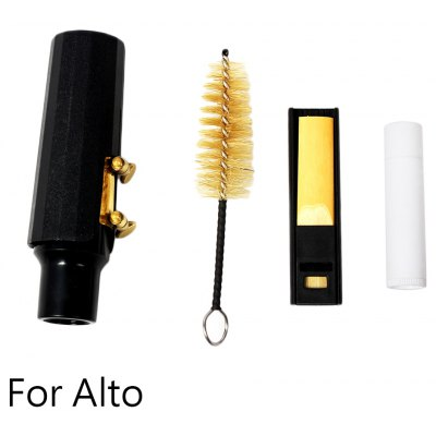 5 in 1 Sax Accessory Kit
