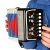 Musical Instrument Accordion for sale