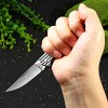 Sanrenmu 7112 RUC-LJ Folding Knife with Clip photo
