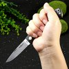 BROTHER 1502 Stainless Survival Knife for sale