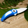 Bird Style Folding Knife with Portable Chain deal