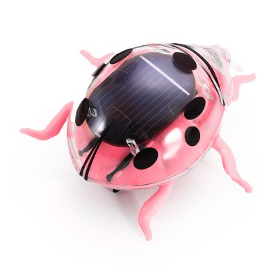 Creative Solar Powered Beetle Novelty Vibrating Toy Teaching Aid for Children
