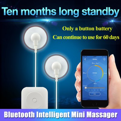 Mini Portable Electric Massager