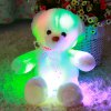 50cm / 20 inch Luminous Cartoon Bear Plush Toy deal