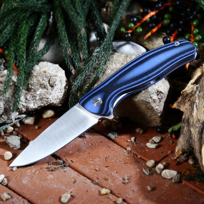 liner,lock,folding,knife,blue,coupon,price,discount