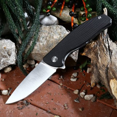 Liner Lock Folding Knife with G10 Handle