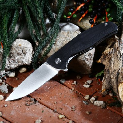 Liner Lock Folding Knife with 7Cr17Mov Stainless Steel Blade