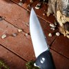 Liner Lock Folding Knife with 7Cr17Mov Stainless Steel Blade photo