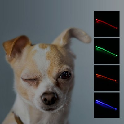 Yeshold Flashing LED Pet Dog Collar Safety Night Walking