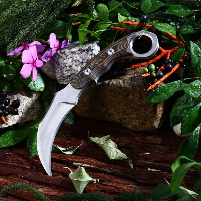 5Cr13Mov Stainless Steel Fixed Claw Knife with G10 Handle