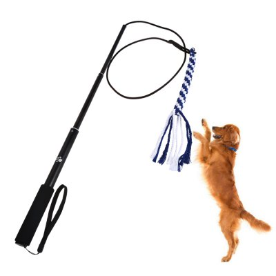 Outdoor Interactive Dog Pet Teaser Toy