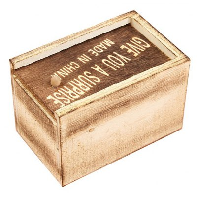 Hidden Insect Wood Box