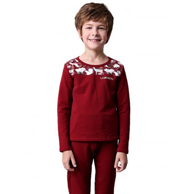 Liancaiyi Long Sleeve Printed Boy Suit (liancaiyi) St. Paul (Saint Paul) объявления новое