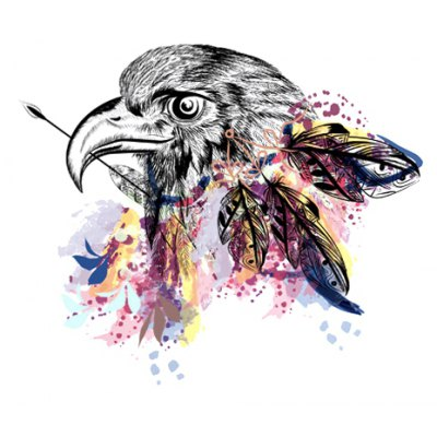 Eagle Printed Removable Wall Sticker Wallpaper