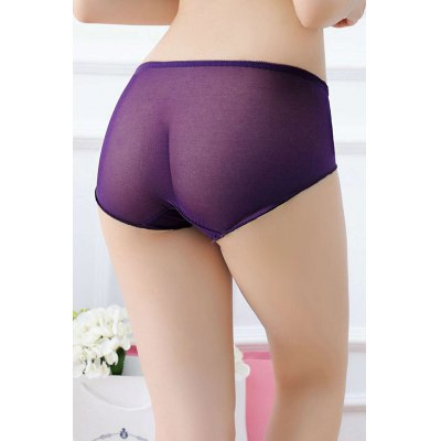 Women Flower Embroidery Sheer Mesh Sexy PantiesBottoms<br>Women Flower Embroidery Sheer Mesh Sexy Panties<br><br>Material: Nylon, Spandex<br>Package Contents: 1 x Underwear<br>Package size: 15.00 x 15.00 x 2.00 cm / 5.91 x 5.91 x 0.79 inches<br>Package weight: 0.0500 kg<br>Product weight: 0.0200 kg