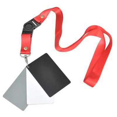 White / Black / Grey Exposure Card with Neck Strap