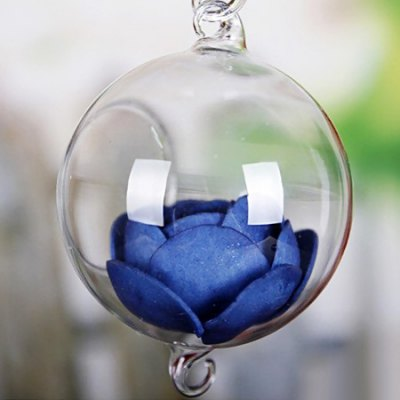 Plant Terrariums Fashionable Glass Greenhouse Ball Shape Hanging Vase