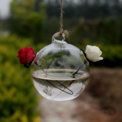 Creative Glass Hydroponic Ball Shape Hanging Vase