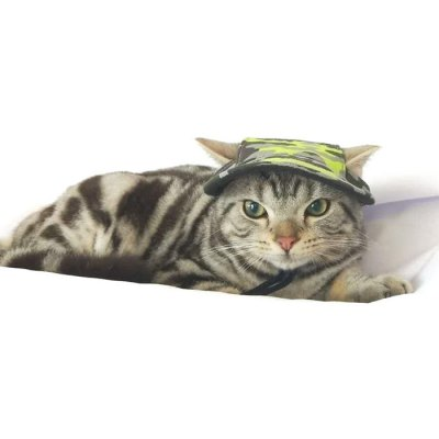 Camouflage Wearable Pets Cap for Cats Dogs