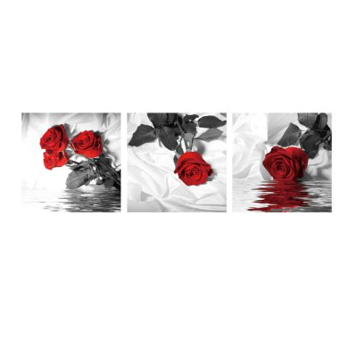 3pcs Rose Printing Canvas Wall Decoration