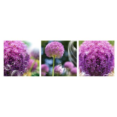 3pcs Flower Clumps Printing Canvas Wall Decoration