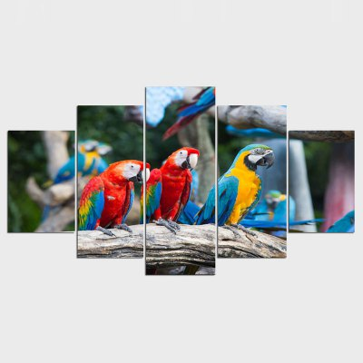 Wall Pictures Macaw Photo Print on Canvas Wall Art Animal Colorful Bird Picture Painting for Home Decoration