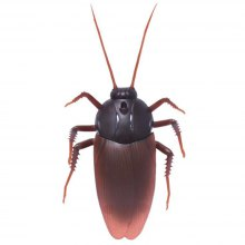 Sandistore Infrared Remote Control Realistic Fake Cockroach RC Prank Toys Insects Joke Scary Trick