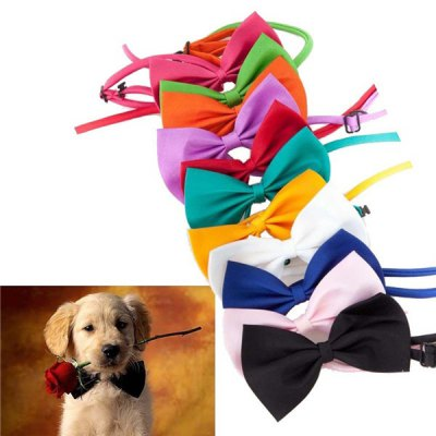 Bow Tie Necklace Collar Puppy Dog Cat Pet Collar