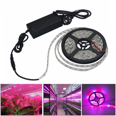 LED Grow Lights Growing LED light Strip 5050 IP65 Plant Growth Light for Greenhouse Hydroponic plant 5m/lot AC100-240V