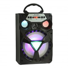 MS - 216BT Bluetooth Portable Loudspeaker FM Radio