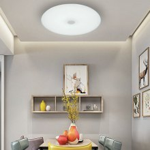 X1088 - 36W - LY - YX Music Color Light Conversion Bluetooth Ceiling Lamp